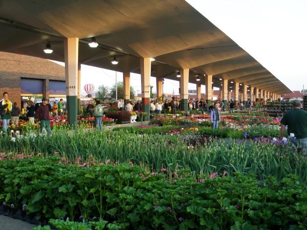 Flower Day at Eastern Market in Detroit, Michigan - Spring in Michigan