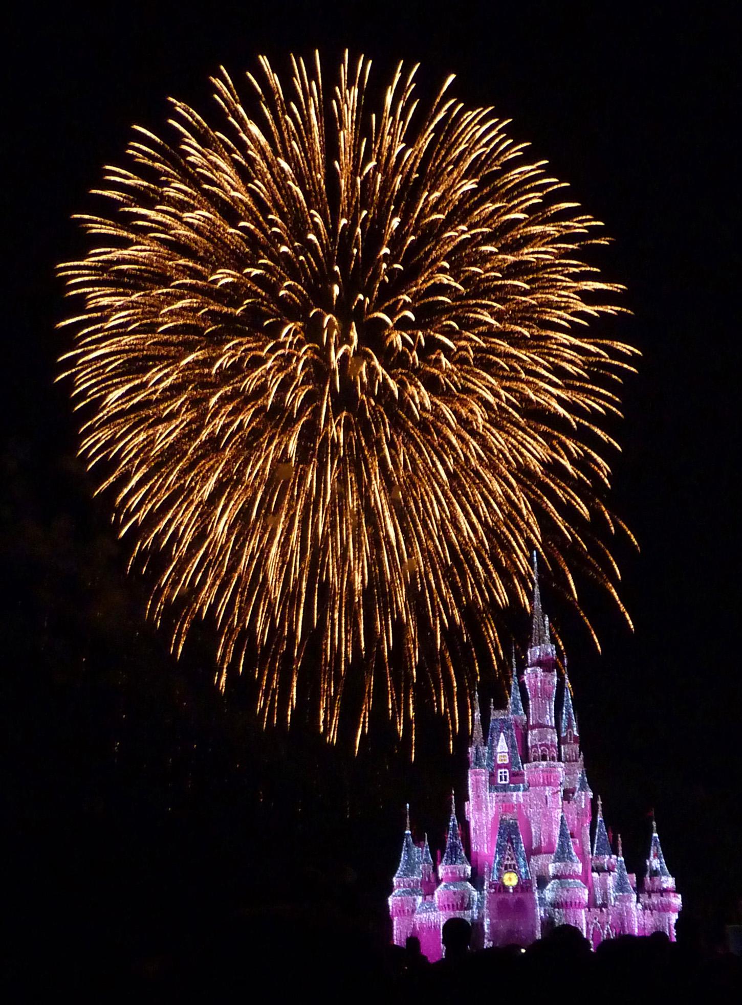 Wishes fireworks show at the Magic Kingdom in Walt Disney World - Orlando, Florida