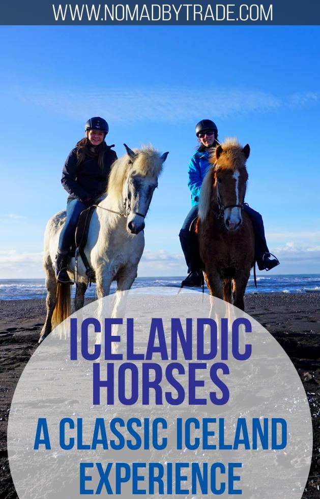 Pin - Horses