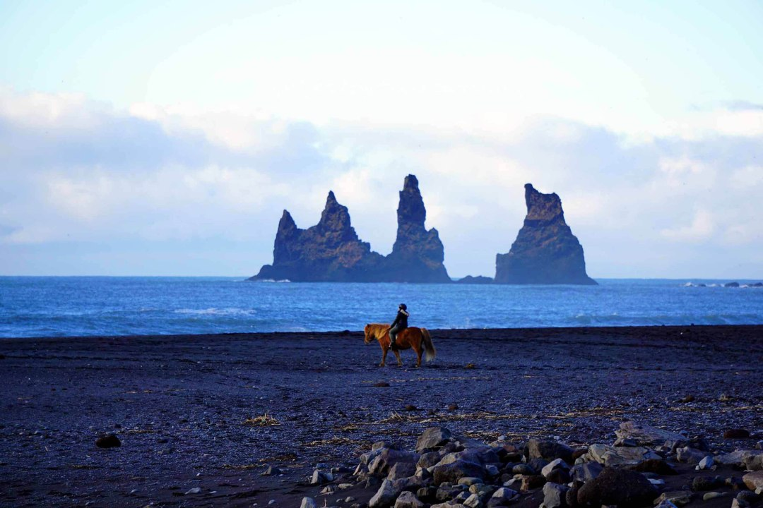 Horseback riding on a black sand beach in Vik, Iceland